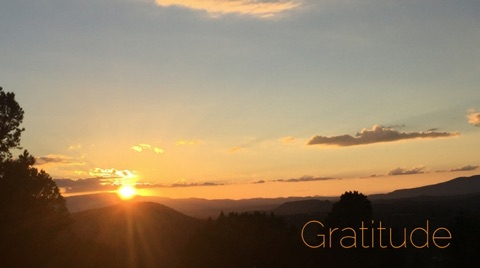 WBNL_Gratitude.jpg