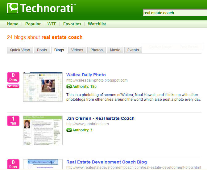 Realestatecoachsearch_2