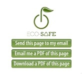 Ecosafe_blog_widget_2